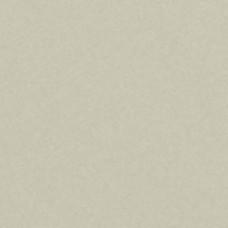Доска CEDRAL CLICK (С08 березовая роща) smooth гладкий