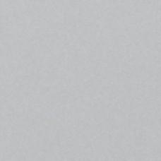 Доска CEDRAL CLICK (С51 серебристый минерал) smooth гладкий